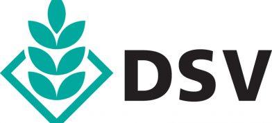 DSV UK Ltd