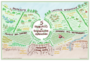 Principles of Regenerative Agriculture