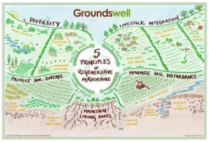 Groundswell 5 Principles of Regenerative Agriculture