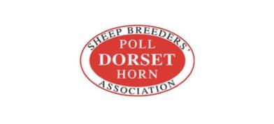 Dorset Horn + Poll Dorset Sheep Breeders Association
